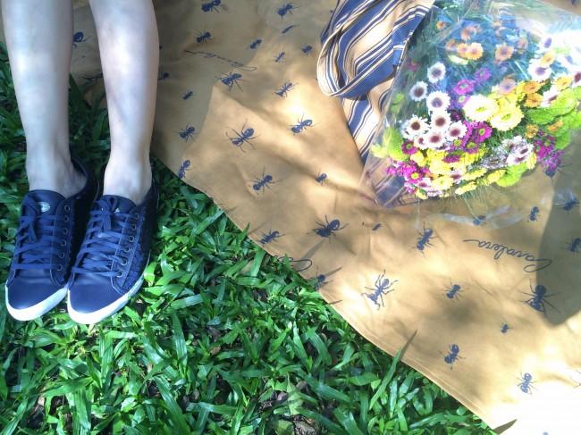 Cavablog: dia de piquenique