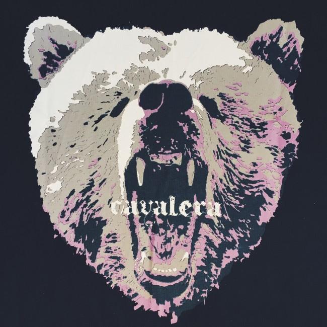 Liquida da Liquida: Estampa Ursos